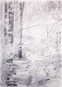 Proljetna šuma